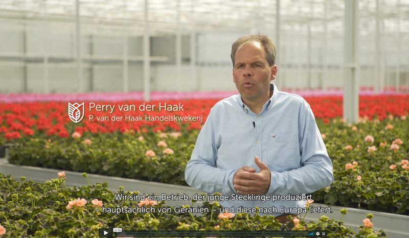 Video Perry van der Haak